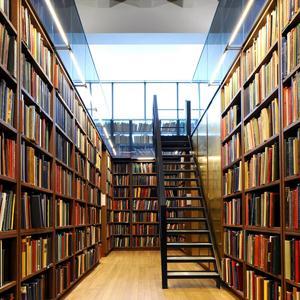 Библиотеки Сухого Лога