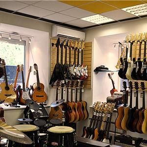 Музыкальные магазины Сухого Лога